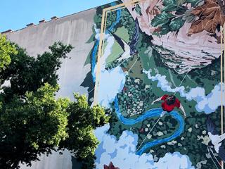 Converse CityForest